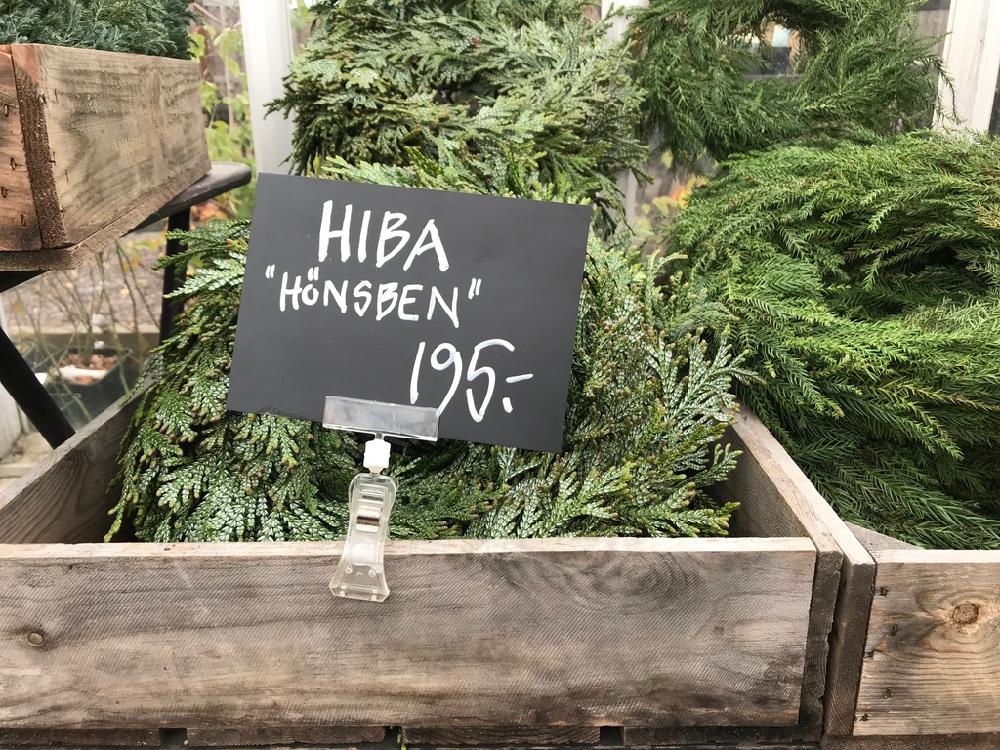 Een houten kistje met kerstgroen erin en een prijsbordje
