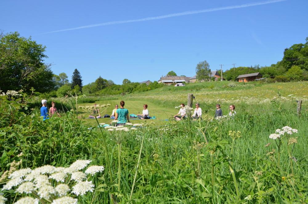 Yoga in een grasveld met witte bloemen