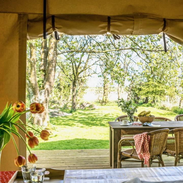 Doorkijk van binnen naar buiten, met tulpen en eettafel op de veranda