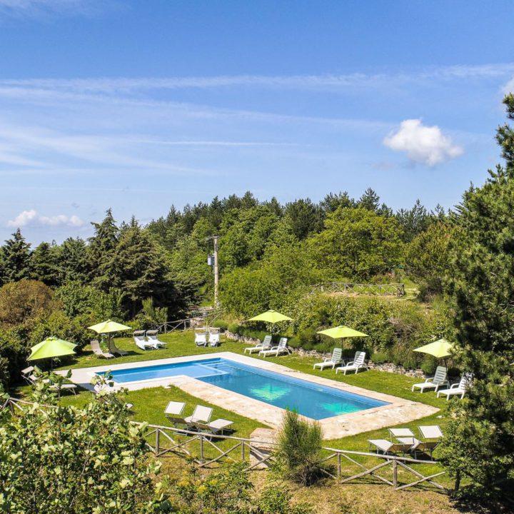 Zwembad met gras en struiken eromheen, ligbedden en groene parasols