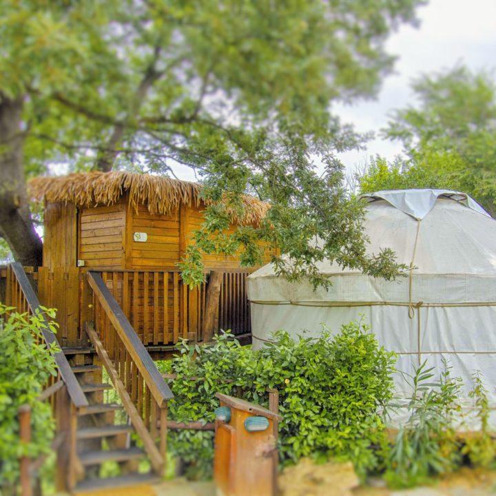 Een boomhut met ernaast een Mongoolse yurt