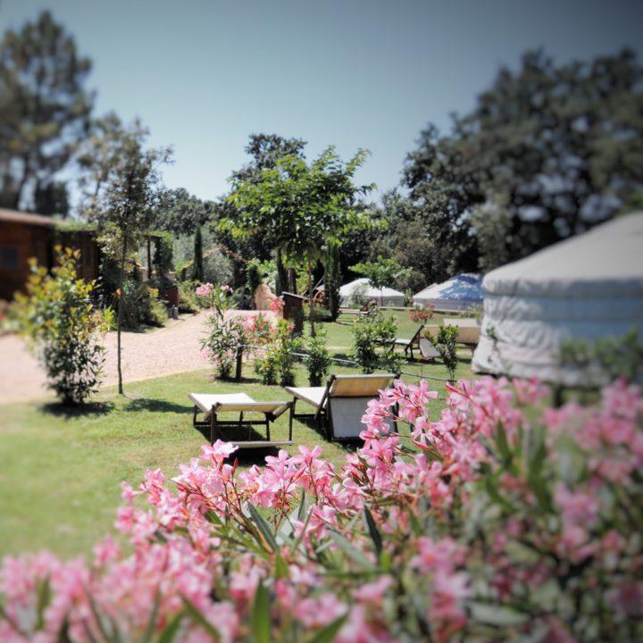 Tuin met bloemen, grasveld en een yurt