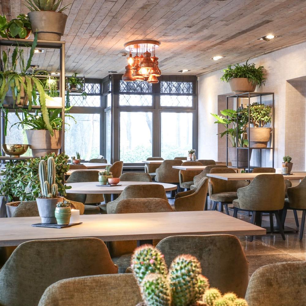 Modern restaurant met natureltinten en veel planten