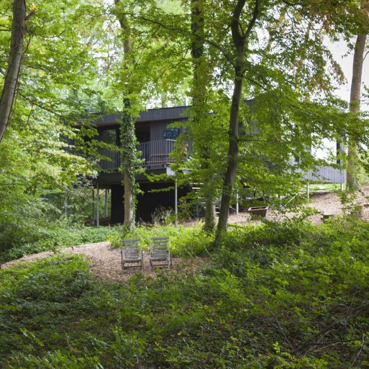 Verstopt in het groen ligt deze mooie cabin