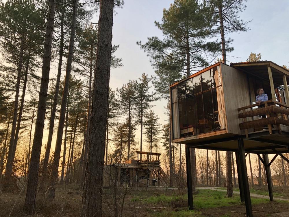 Een boomhut in het bos bij zonsondergang