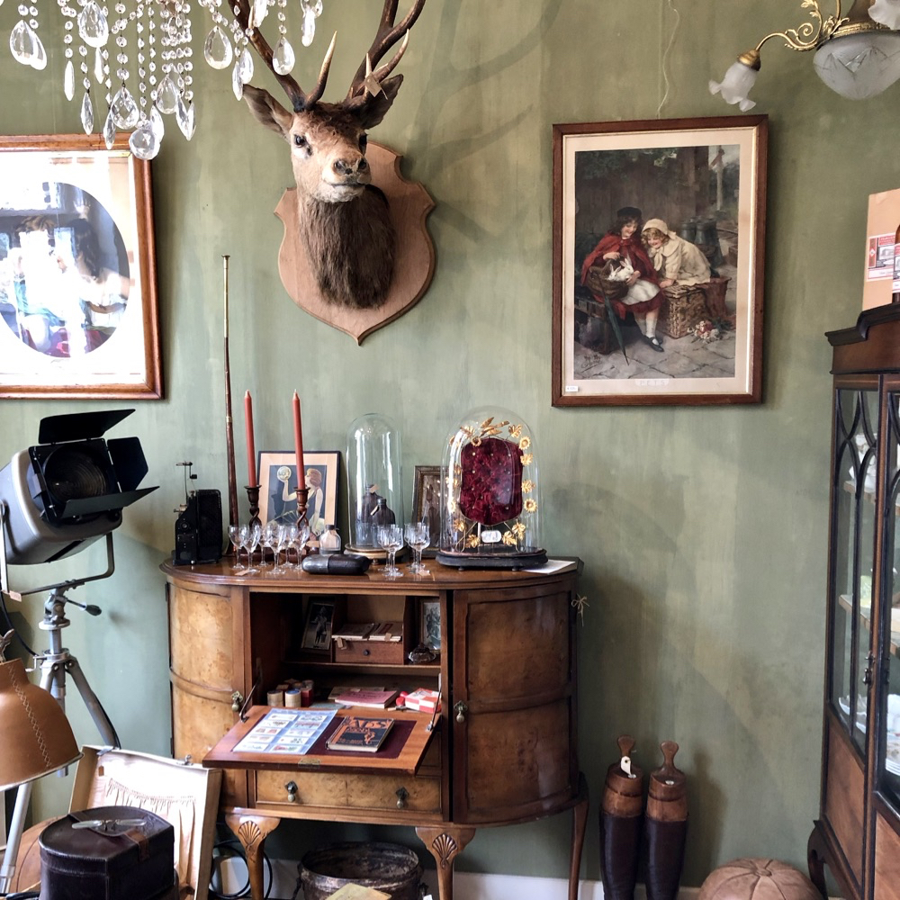 Kamer met groene wand, hertengewei en brocante/antiek