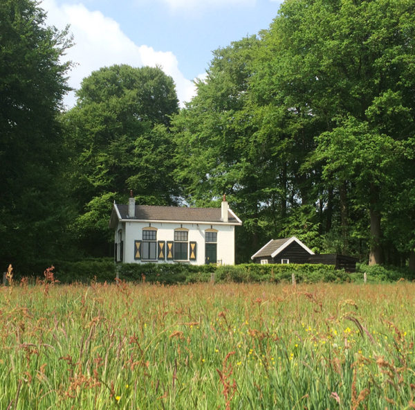 Wit huisje met groen-gele luiken in de natuur