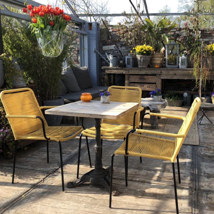Een gezellig ingerichte serre, met loungebank, gele stoeltjes en vazen met tulpen