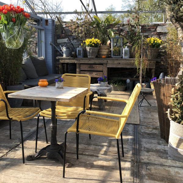 De serre van restaurant Como & Co met gele stoelen en bossen voorjaarsbloemen
