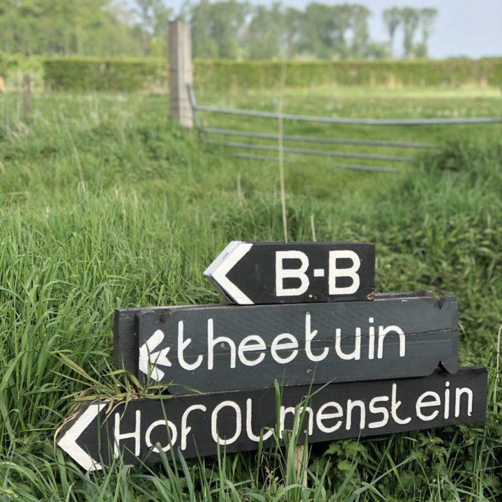 B&B en theetuin