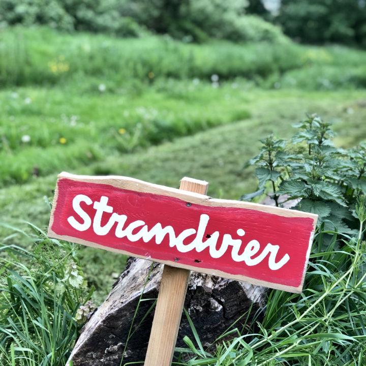 Bordje met de naam Strandvier