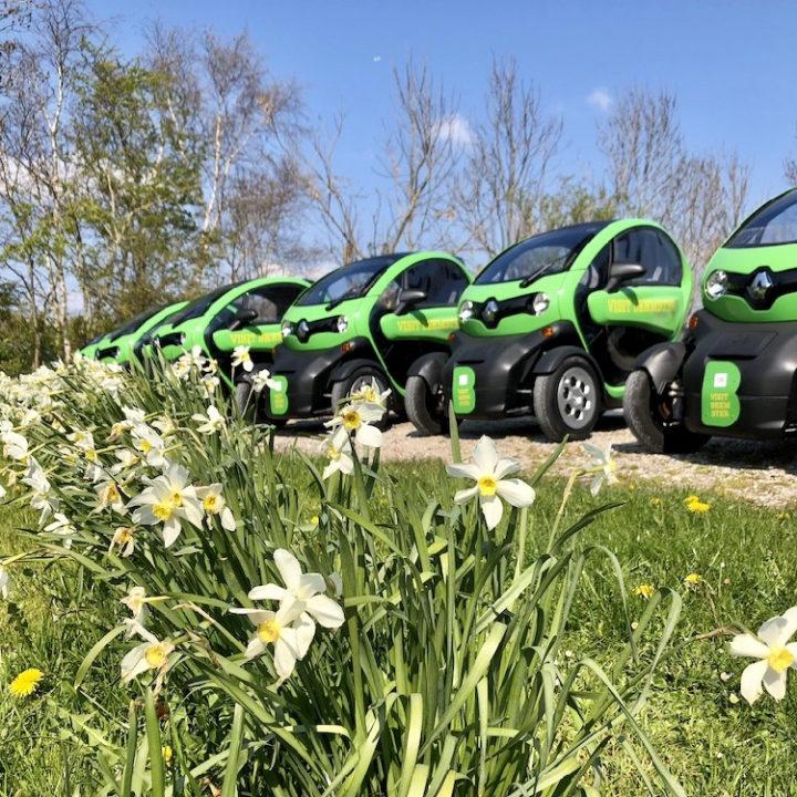 Twizy Renault tussen de bloemende narcissen