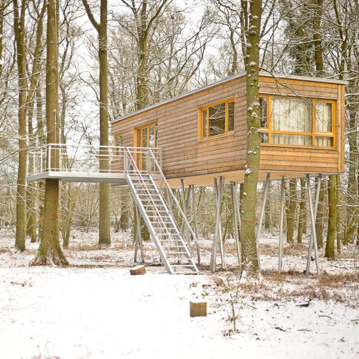 Winter bij de boomhut