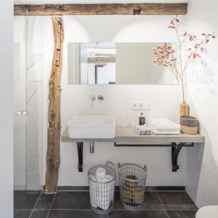 Moderne badkamer in het vakantiehuis, met stoere gebinten