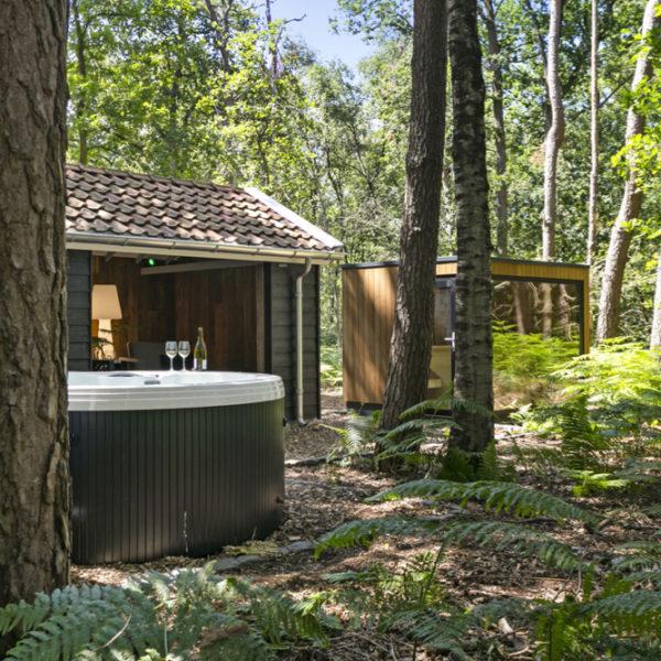 Jacuzzi, sauna en onstpanruimte in het bos