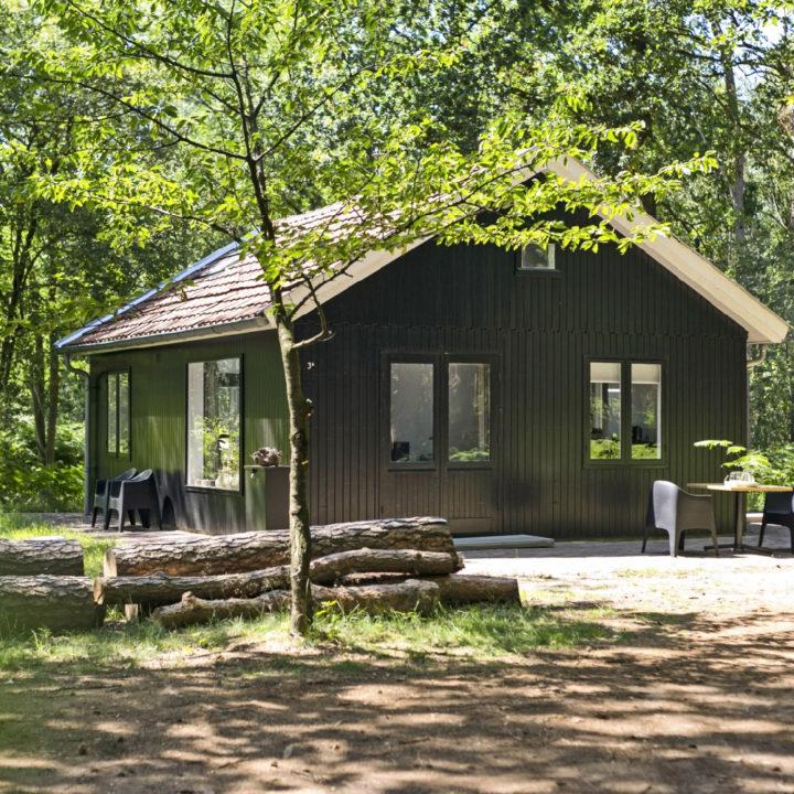 Zwart houten huis in het bos