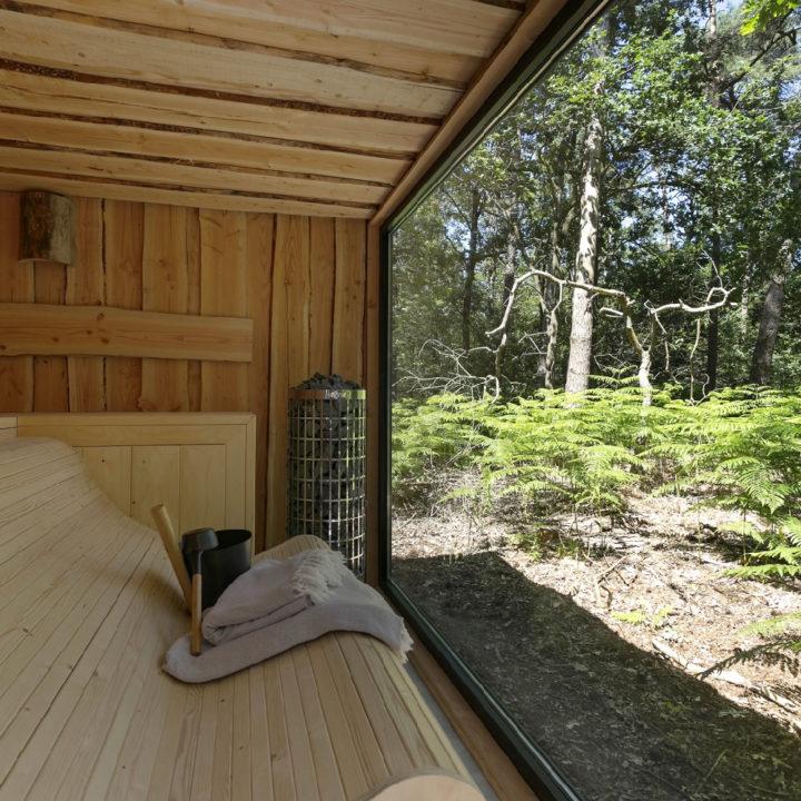 Sauna met groot raam in het bos