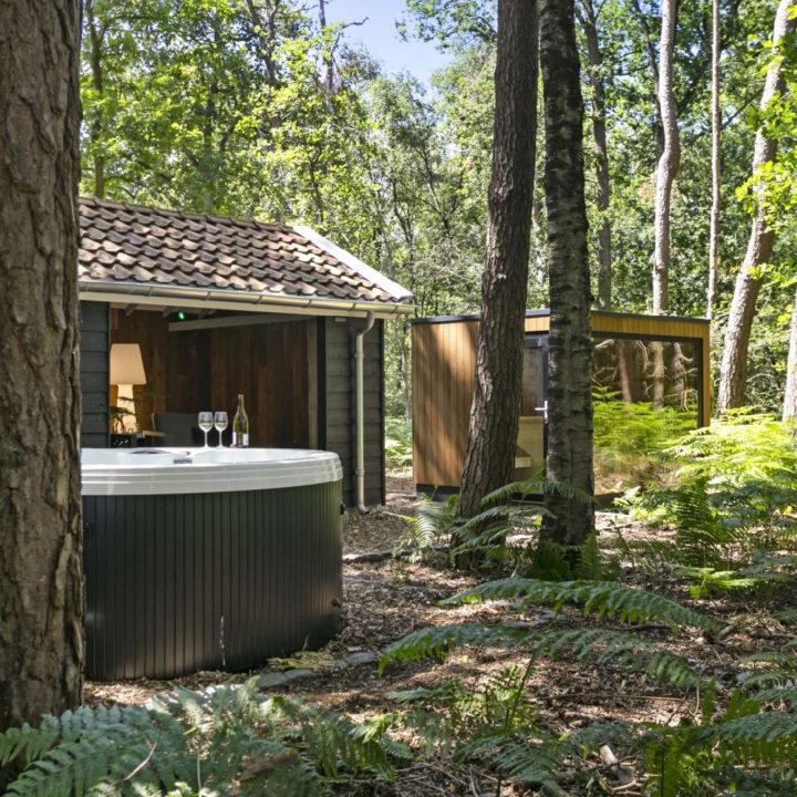 Wellness met jacuzzi en sauna in het bos