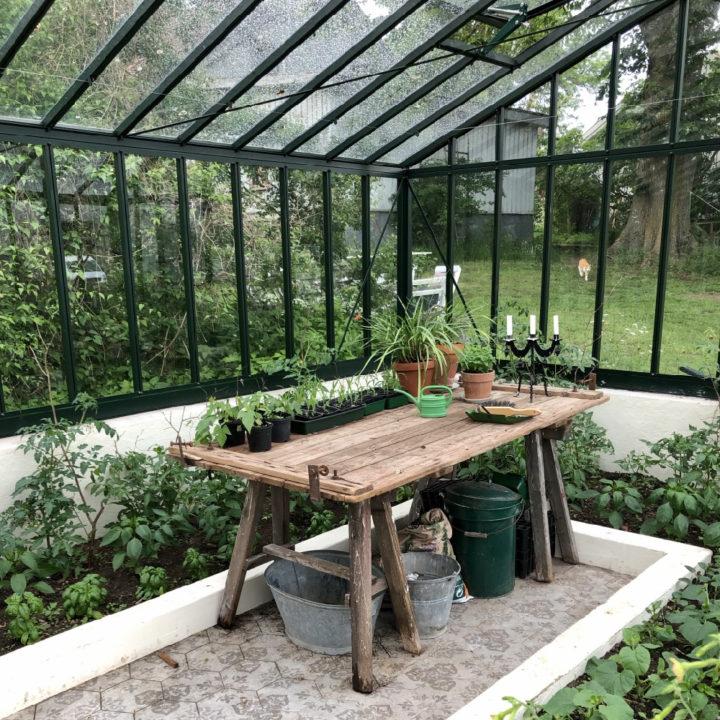 Kas met houten tafel met kasplantjes en een kandelaar