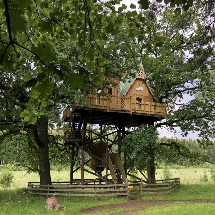 Zelfgebouwde boomhut
