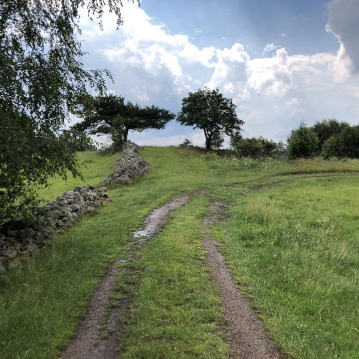 Landweggetje naar de boomhut