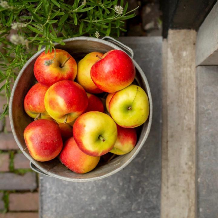 Appels in een emmer
