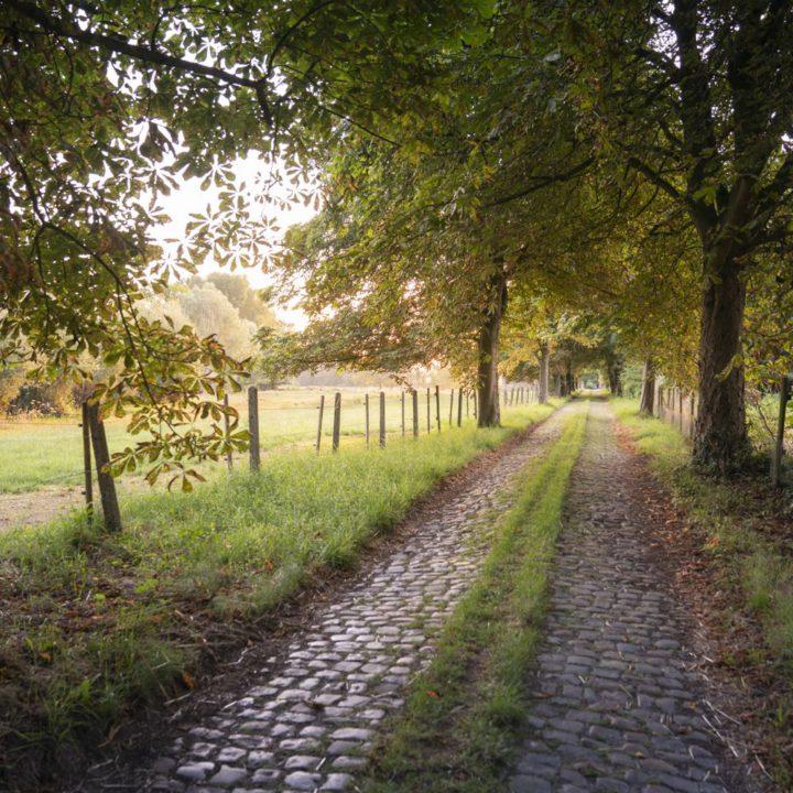 Wandelpad in België
