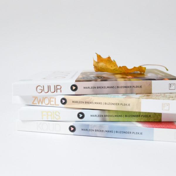 Stapel van vier boeken
