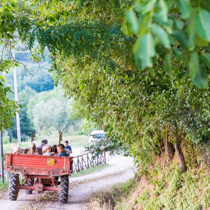 Kinderen in de kar achter een tractor