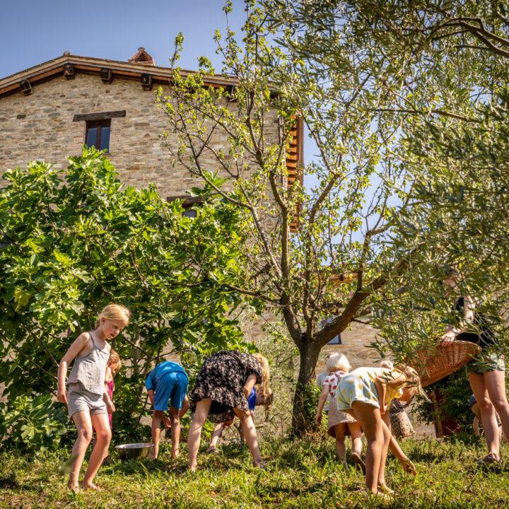 Kinderen rapen fruit in de tuin bij het vakantieadres