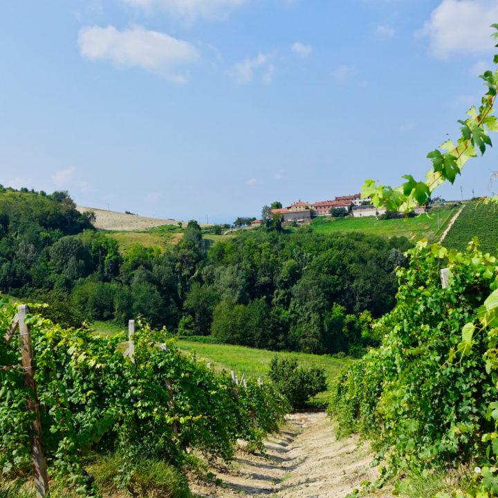 Groene heuvels in Noord-Italië