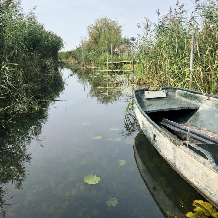 Een boot in het water