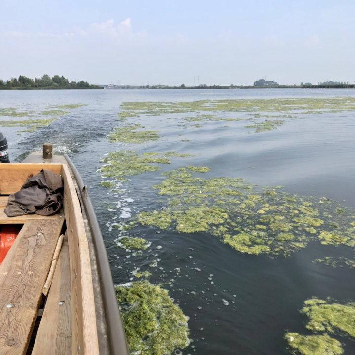 Een houten boot vaart door mos in het water