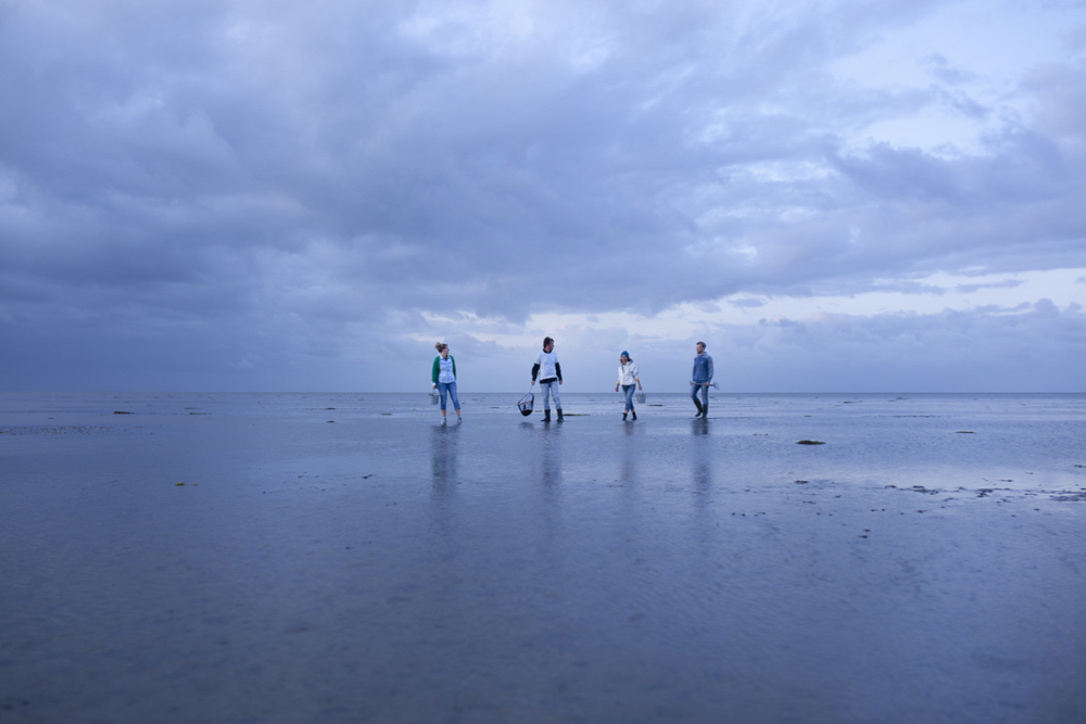 Vier mensen lopen over het strand op een bewolkte dag
