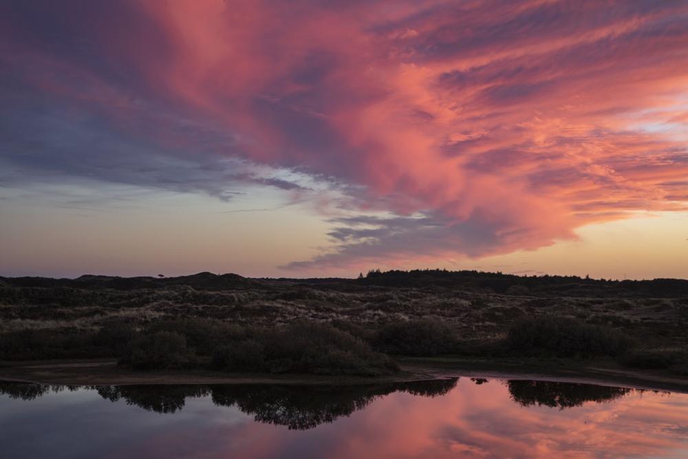 Een roze lucht boven een veld
