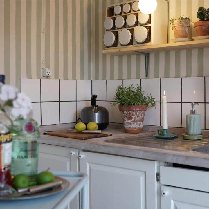 Een kettel in een keuken, met een plantje er naast