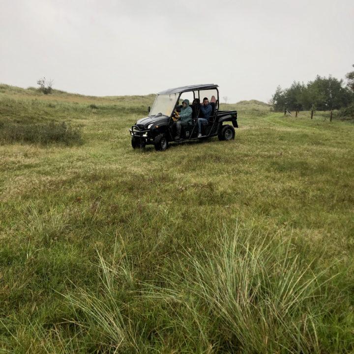 Safari in de natuur op Ameland