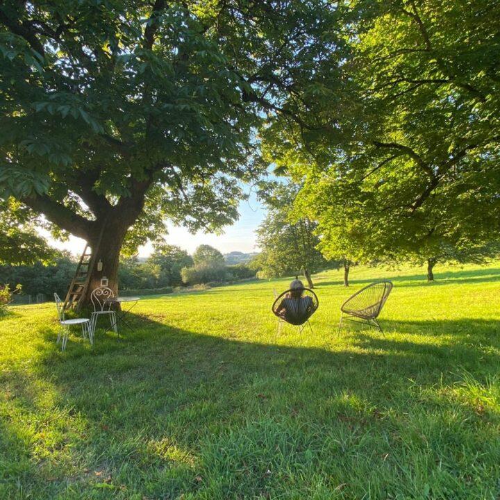 Zitjes verspreid in het gras in Frankrijk