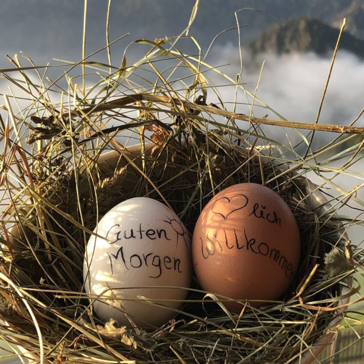 Vrolijke eitjes bij het ontbijt in Zuid-Tirol