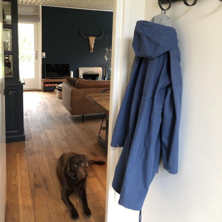 Honden welkom in het vakantiehuis op Terschelling