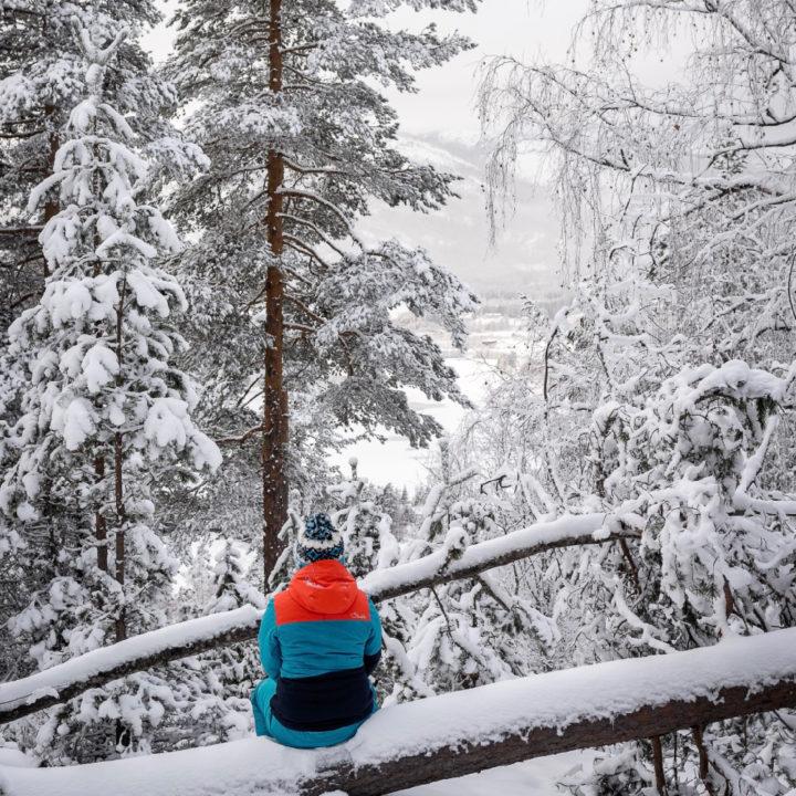 Genieten van het sneeuwlandschap