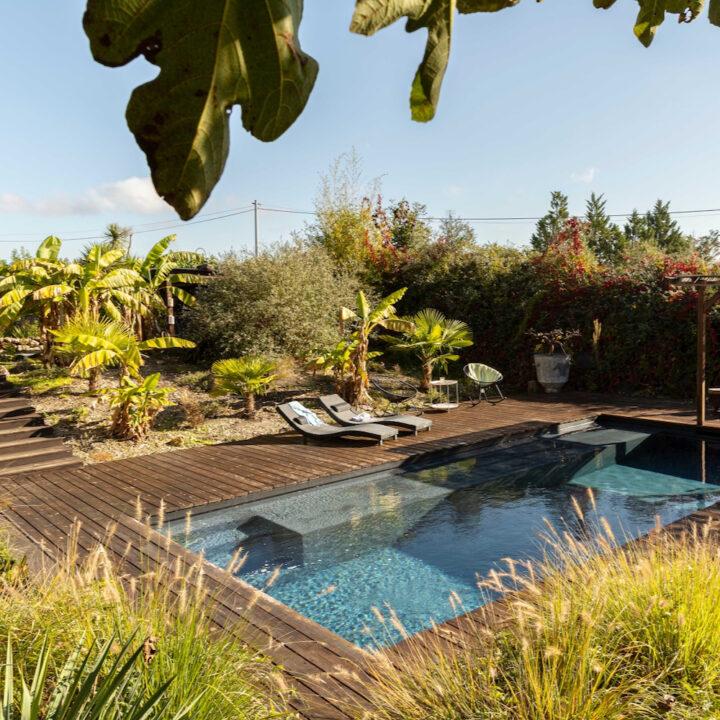Zwembad in de tuin met veel groen en bananenbomen