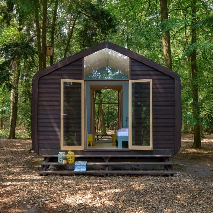 Wikkelhouse in het bos