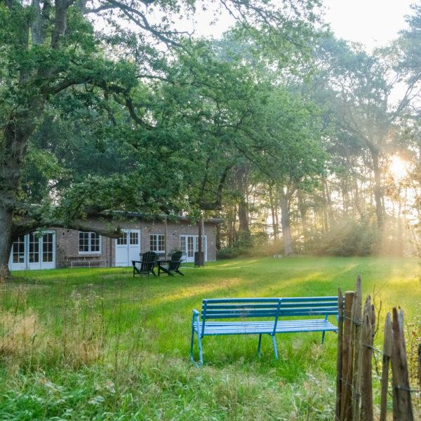 Vakantiehuis in het bos, in een privé bos