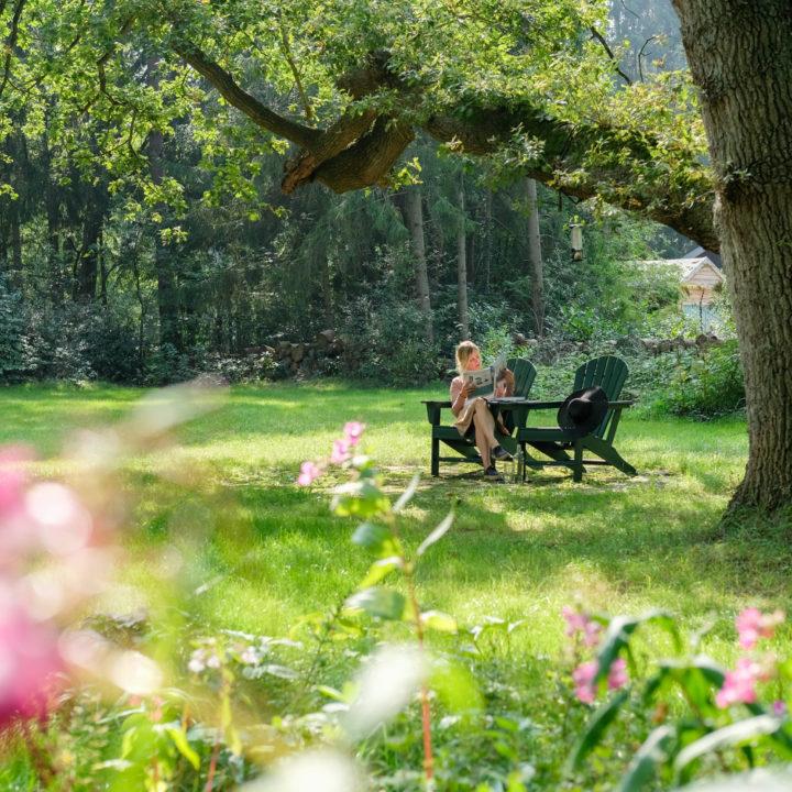 Luie stoelen in het gras van het vakantiehuis in het bos