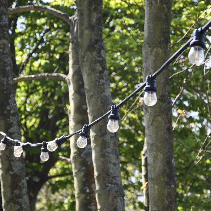 Lampjes slinger in de tuin van de B&B