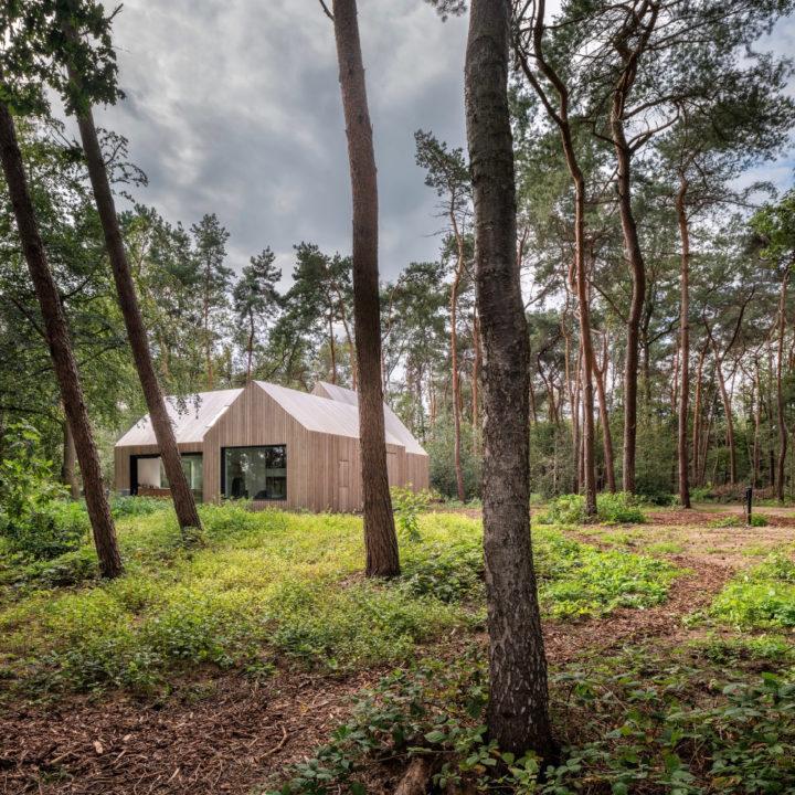 Design vakantiehuis in het bos