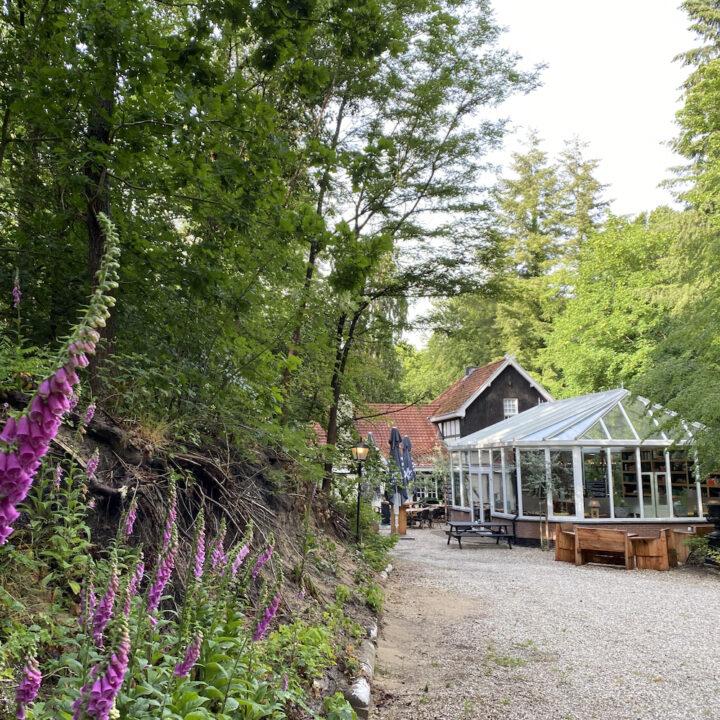 Restaurant in het bos bij Nunspeet