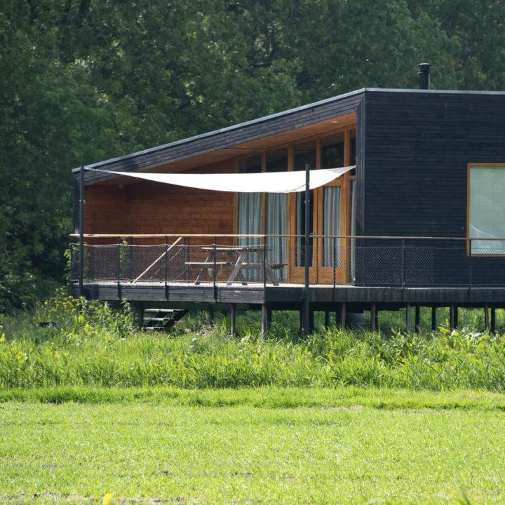Houten vakantiehuis op palen in een weiland bij Amsterdam