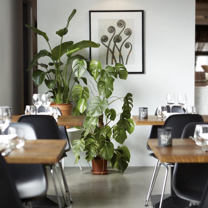 Restaurant bij het hotel in het Vechtdal